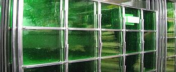 Mondgeblazen antiek groen
